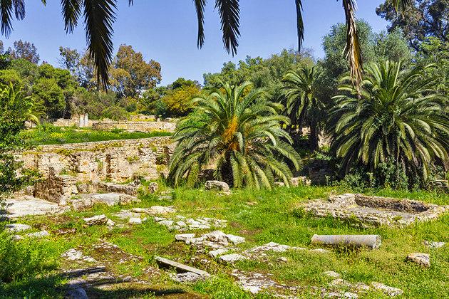 Пунический квартал Тунис