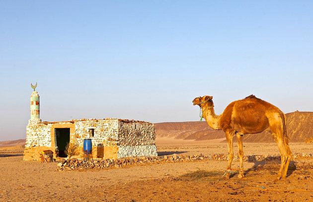 Ужин в деревне бедуинов, Хургада Египет